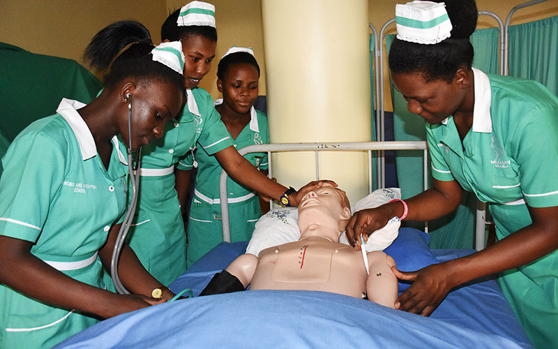 Group of Nursing students during a Practical Session