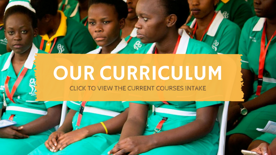 Take a look at our Courses Curriculum
